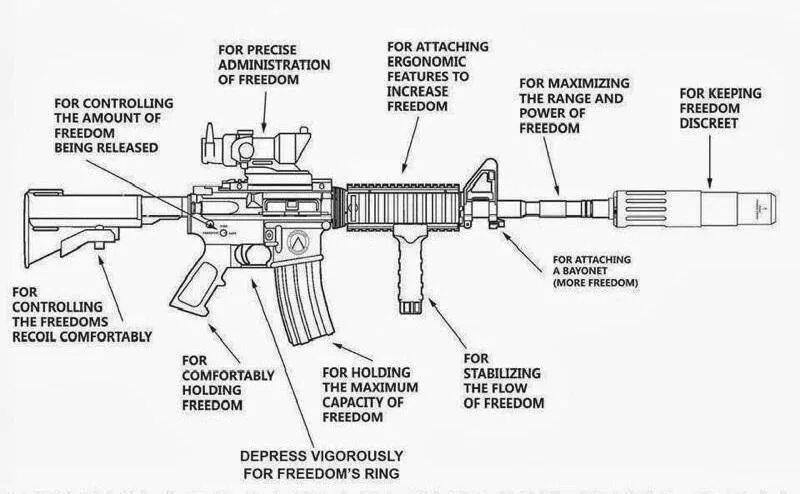 Picture  The Anatomy Of Freedom