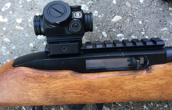 Is the Bushnell Lil P 1x Prism Sight Better Than a Red Dot?
